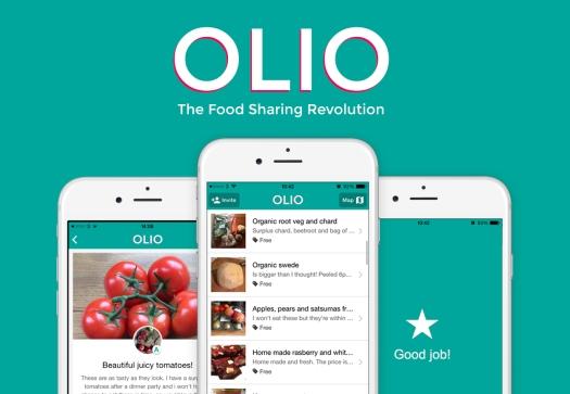 olio-3-screens